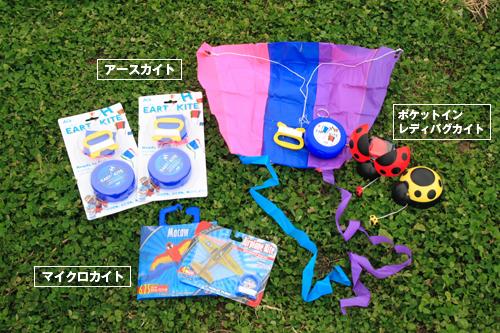 公園で注目の的!みんなをひとつにする凧揚げ遊び