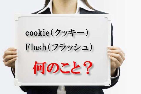cookie(クッキー)、フラッシュ‥って、実際何なの?
