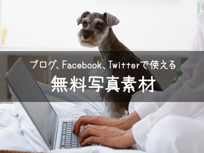 ブログ、Facebook、Twitterで使える無料写真素材サイト5選