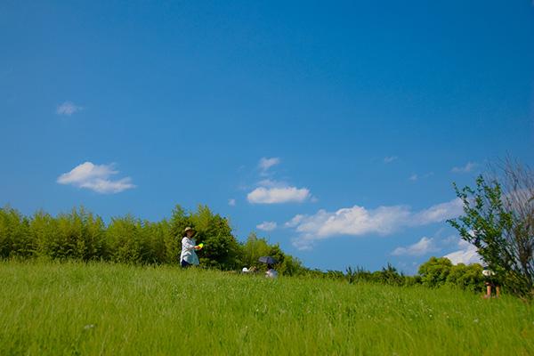 ハイジのように飛び回りたくなる!この春・夏に行くべき日本の草原5選