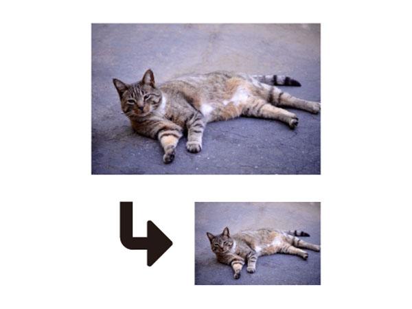 Windows標準搭載の「ペイント」でできる! 写真の簡単リサイズ