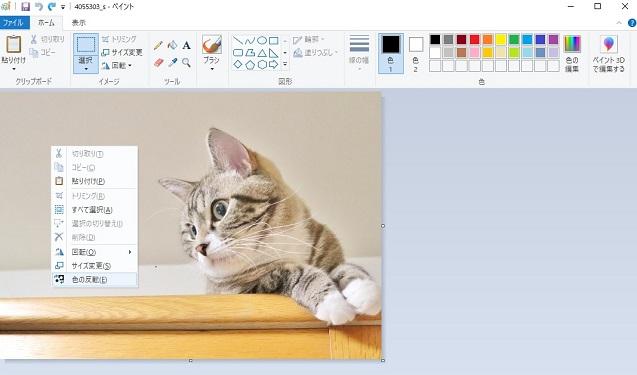 それ、Windowsのペイントでできます!簡単画像加工5選